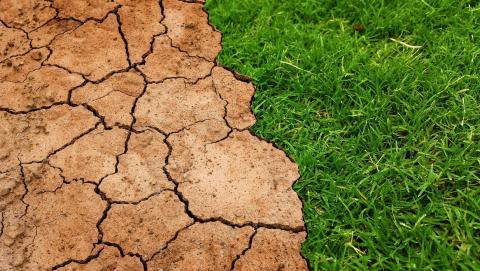 Image of dry land from Pixabay